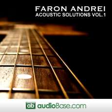 Acoustic Solutions Vol.1