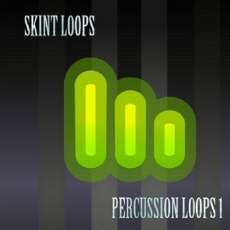 Percussion Loops 1